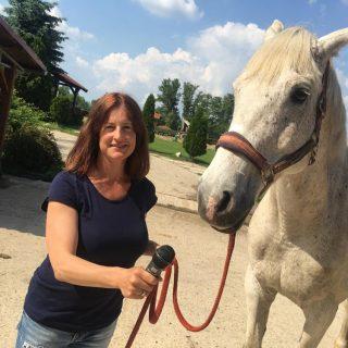 Natália-so-svojím-koňom-Silverom